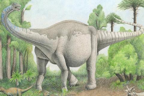 Descubren-restos-de-un-dinosaurio-gigante-desconocido