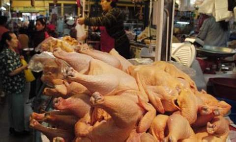 Gobierno-y-avicultores-buscan-equilibrar-el-precio-de-la-carne-de-pollo