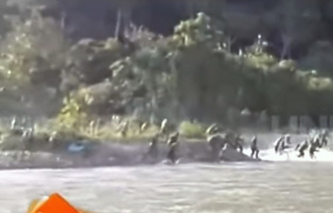 Nueve-efectivos-de-erradicacion-de-coca-resultaron-heridos-tras-enfrentamiento-con-cocaleros