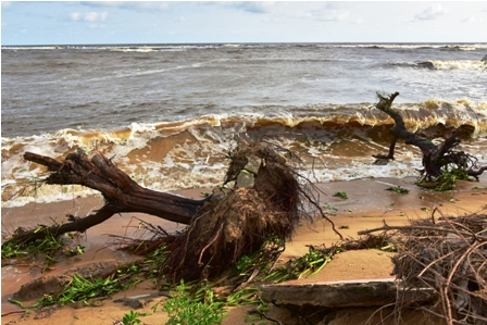 Fenomenos-extremos-a-causa-del-cambio-climatico