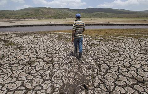 Sequia-afecto-a-172-municipios,-Gobierno-espera-lluvias-en-todo-el-pais-desde-diciembre