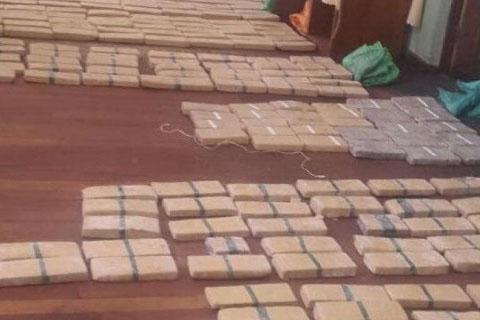 FELCN-aprehende-a-14-personas-y-secuestra-casi-700-kilos-de-droga