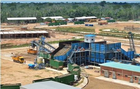 Piden-deforestar-bosques-para-produccion-de-azucar