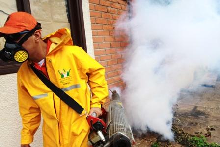 Fumigan-el-Segip-para-destruir-criaderos