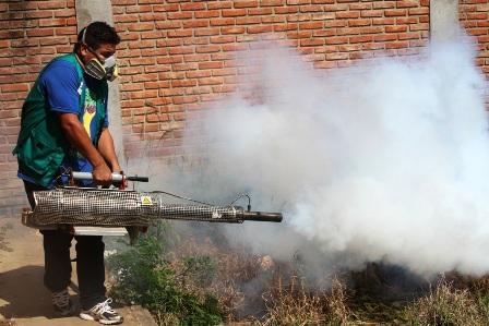 Reportan-8vo-caso-de-zika-en-Santa-Cruz