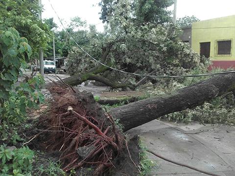 Fuertes-tormenta-deja-sin-electricidad-a-Yacuiba