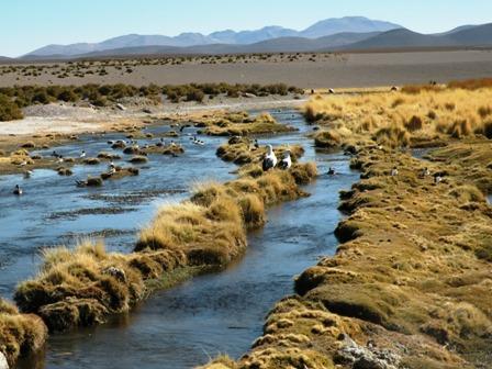 Demanda-internacional-a-Chile-por-aguas-del-Silala