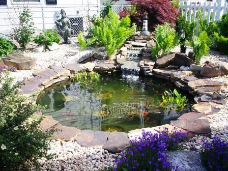 Cmo realizar un estanque para peces