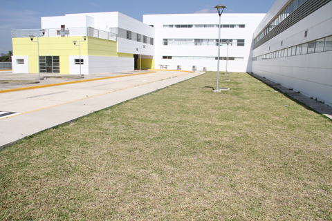 Concejal-pide-investigar-compra-de-tomografos-para-hospitales-municipales