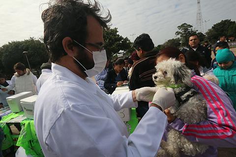Comenzo-la-campana-de-vacunacion-de-mascotas-en-Santa-Cruz