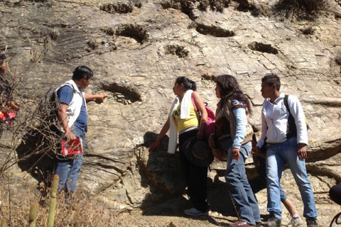Hallan-en-Bolivia-huella-de-dinosaurio-de-1,2-metros-de-diametro