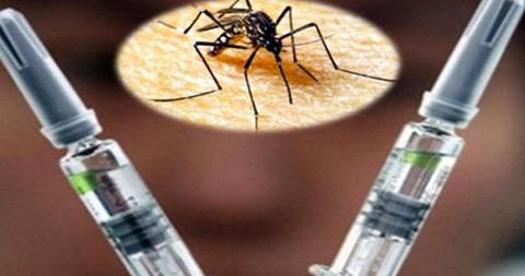 La-vacuna-contra-el-zika-comienza-a-probarse-en-humanos