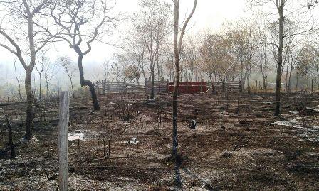 Guarayos-pide-declararse-zona-de-desastre-por-sequia