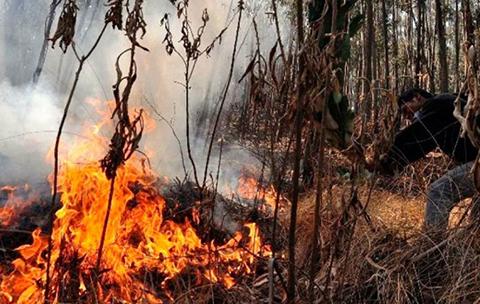 Senamhi-reporta-5.084-focos-de-calor,-Santa-Cruz-y-Beni-son-los-mas-criticos