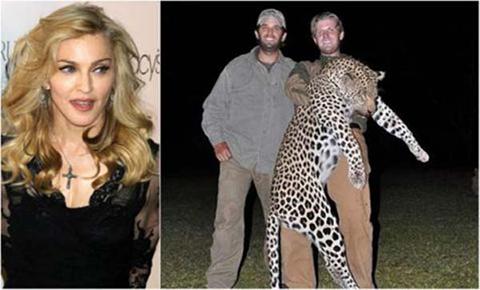 Madonna-arremete-contra-los-hijos-de-Trump-