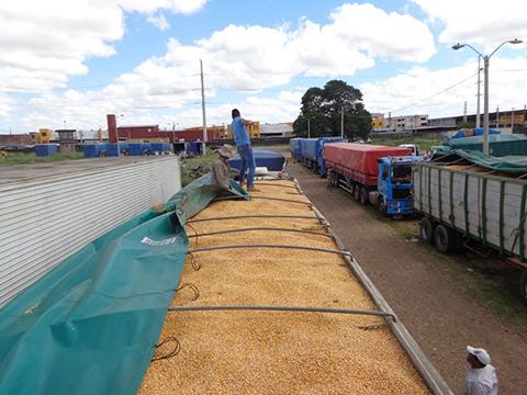 Aduana-decomisa-6-camiones-con-maiz-de-contrabando