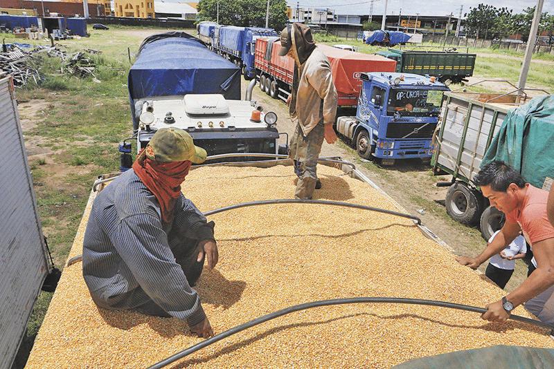 Seis-camiones-con-maiz-son-retenidos