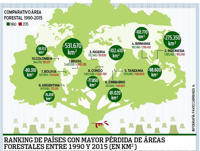 Bolivia,-entre-los-10-paises-con-mas-perdidas-forestales