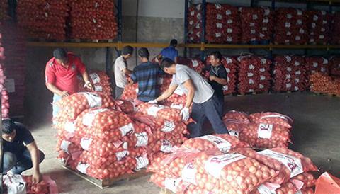 Prohibiran-importacion-de-cebolla,-tomate,-ajo-y-papa-desde-diciembre