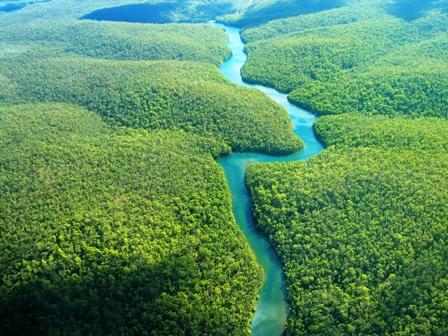 Amazonia,-Petrobras-suspende-licitaciones-