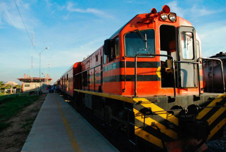 El-tren-Bioceanico-reunira-a-inversionistas-en-el-pais