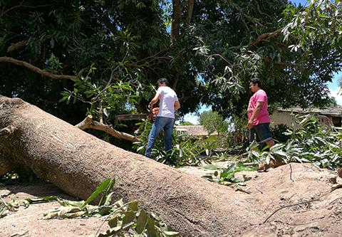 Temporal-causa-destrozos-en-al-menos-20-viviendas-en-San-Matias