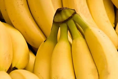Bolivia-exporto-mas-de-$us-36-millones-de-banano