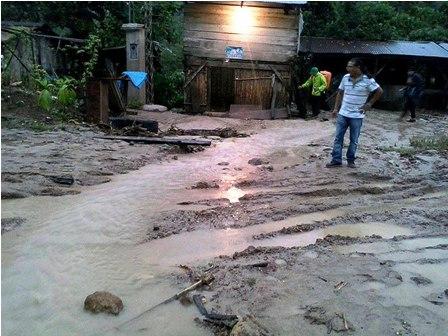 Desbordes-de-rios-afectan-cultivos