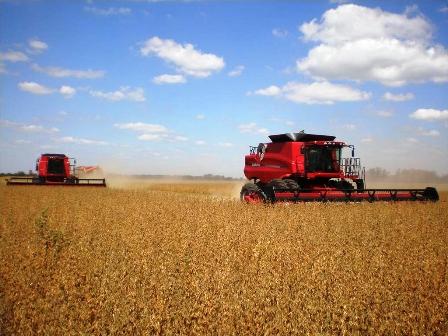 El-clima-retrasa-la-cosecha--de-la-campana-de-verano