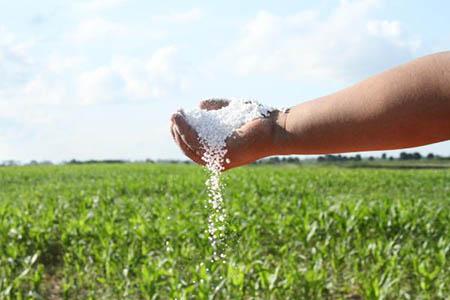 Paraguay-expresa-interes-por-urea-y-gas-boliviano