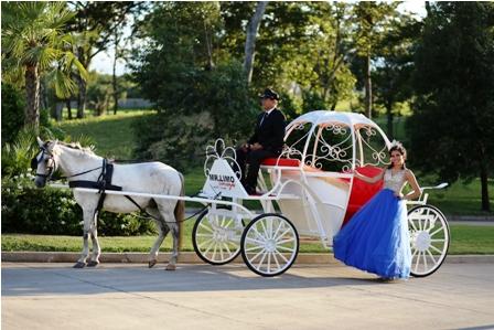 Proponen-carros-a-caballo-como-atractivo-turistico