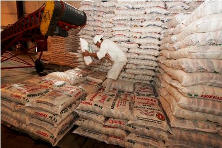 Guabira-preve-producir---2,7-millones-de-quintales