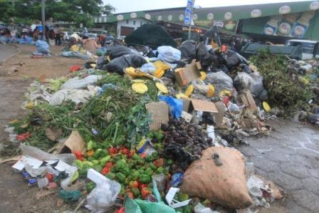 1.300-millones-de-Tn-de-comida-se-desperdicia