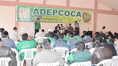 Adepcoca-acusa-al-Gobierno-de-intentar-dividir-el-sector