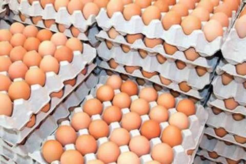 Conozca-los-puntos-donde-Avicultores-regalaran-huevos-por-el-dia-mundial-de-este-alimento