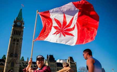 Canada-legaliza-consumo-recreativo-de--la-marihuana