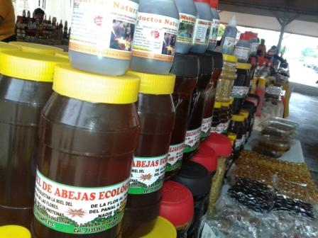 Apicultores-de-La-Guardia-producen-16-tn-de-miel