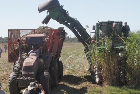 Caneros-percibiran-el-60%-del-total-de-ingresos-por-venta-de-etanol