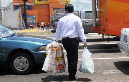 Analizaran-proyecto-de-ley-contra-uso-de-bolsas-