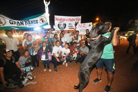 Piden-sancion-para-ladrones-de-mascotas