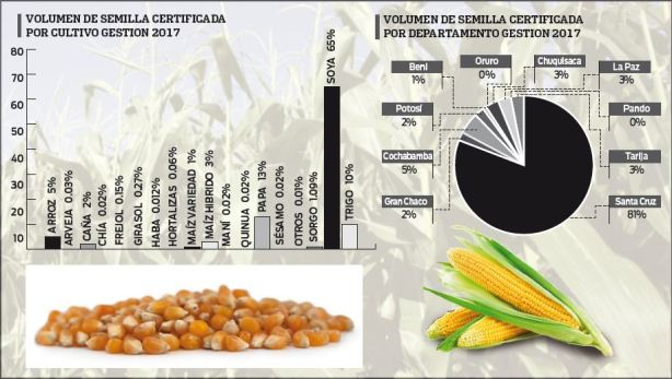 Certificacion-de-semillas-alcanzo-105-mil-toneladas