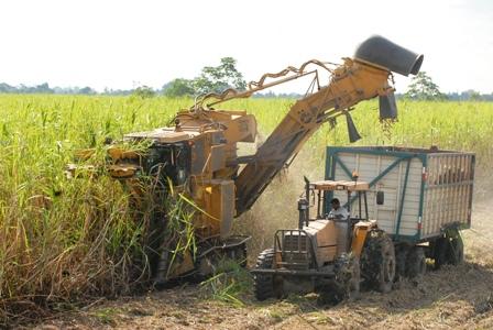 Ingenios,-Ya-preven-inversiones--en-tecnologia-del-etanol