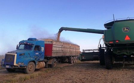Baja-produccion-merma-mas-de-18-mil-viajes-a-camioneros