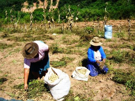 Campesinos-piden-ampliar-produccion-de-alimentos