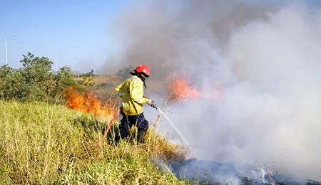 -Santa-Cruz-supera-la-mayor-cantidad-de-incendios-forestales-de-los-ultimos-10-anos
