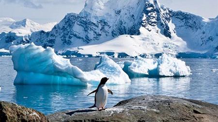 -Armada-plantea-que-Bolivia-tenga-una-base-en-Antartida