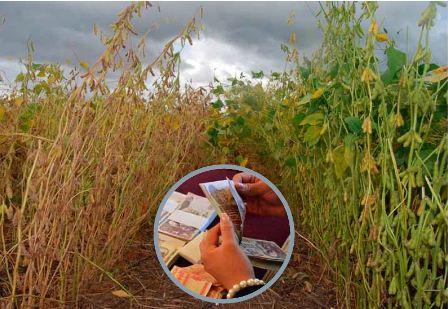 Agropecuarios-sin-posibilidad-de-cumplir