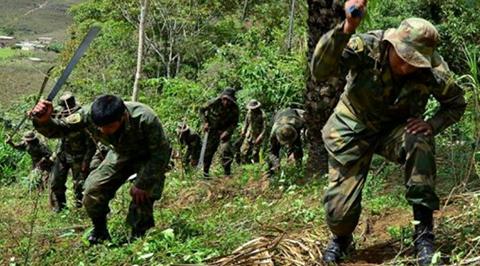Exsenador-Villca:-Gobierno-arremete-contra-Los-Yungas-para-hacer-respetar-la-coca-del-Chapare