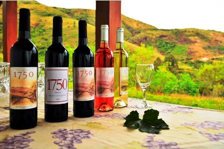El-Washington-Post-elogia-vinos-bolivianos