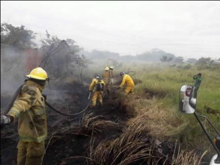 Precipitaciones-sofocaron-incendios-en-la-Chiquitania